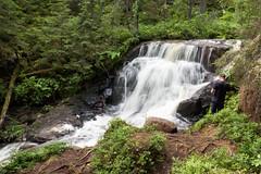 Chute d'eau (sosivov) Tags: summer water forest river nationalpark sweden cascade worldheritage högakusten skuleskogen highcoast