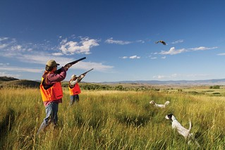 Wyoming Upland Hunting, Fishing, Horseback & Spa 49
