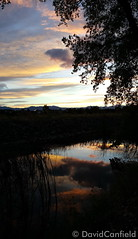 September 5, 2015 - Sunset reflects at McKay Lake in Broomfield. (David Canfield)