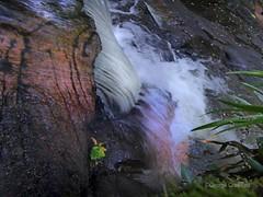 Glen Water 2 (g crawford) Tags: water waterfall glen crawford ayrshire northayrshire westkilbride kirktonhall kirktonhallglen