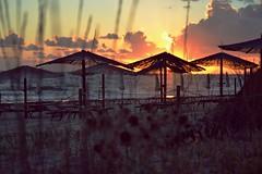 Island...? (Deborah Padula) Tags: autumn sunset sea sky italy nature clouds landscape sand italia tramonto mare colours dream bamboo lazio