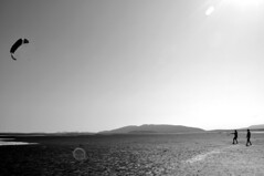 DSC_0004 (Travis Schuldt) Tags: blackandwhite kite beach water monochrome sport washington seaside sand outdoor pacificnorthwest pnw skimboarding bnw skimboard skimming