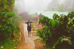 IMG_6239 (athingcalledlife) Tags: blackandwhite india green art nature rain photography colours lush coorg virajpet vsco