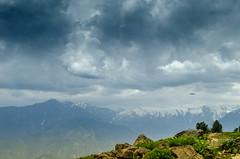 Where Eagles Dare (rehan_mazhary) Tags: pakistan kaghan shogran naran