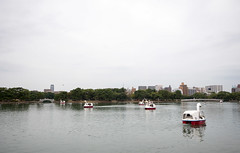 P1580641.jpg (Rambalac) Tags: water japan pond asia вода пруд fukuokaken япония fukuokashi азия lumixgh4