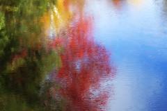 mode RVB (Renald Bourque) Tags: autumn canada colour nature water photoshop automne river rouge photo eau quebec vert rivière bleu couleur laurentide rvb photographe renald renaldbourque modervb saintémilie