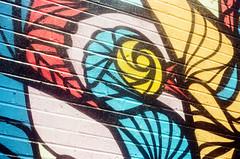 44990021 (alexdotbarber) Tags: color bird analog 35mm mural rangefinder f8 kodakgold100 1125 expiredfilm colorfilm colornegative petri7s houstonstreetart 45mmf28 danielanguilu