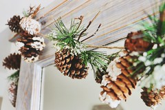 Gratitude #12 (Chicks Who Take Pics) Tags: christmas family winter snow plant cold tree green love nature beautiful leaves photography gorgeous garland photograph whoa pinecones