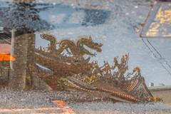 IMG_6195 (小莊4) Tags: dragon water mirror 廟 樂成宮 taiwan taichung canon 500d sigma 1770