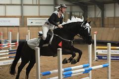 IMG_5220 (Bas & Emily) Tags: horse paarden horses horsejumping hindernis showjumping christmas netherlands paard springen springwedstrijd spring sport jump jumping kerstspringen belleepoque