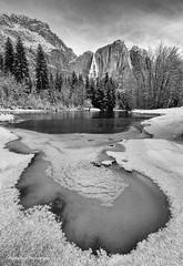 Yosemite Falls (Wei, Willa) Tags: yosemite winter white snow