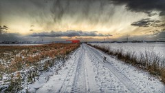 ...still walkin' the dog (Oliver Kuehne) Tags: anton jackrussell terrier jrt bayern bavaria germany lgg5 cellphone winter hiver snow schnee dog hund chien pet