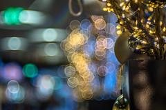 Nearer and further Bokeh - Photo # 21 of a Christmas Series (*Capture the Moment*) Tags: 2016 advent altglas bokeh fotowalk mog meyergörlitztrioplan10028 meyeroptikgörlitztrioplan10028 nightshot sonya7m2 sonya7mii sonya7mark2 sonyilce7m2 bokehlicious