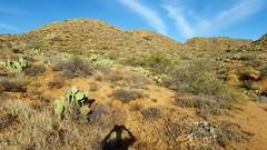 20161210_084918 (Ryan/PHX) Tags: trailrunning bct blackcanyontrail arizona desert outdoors ultrarunning aravaiparunning