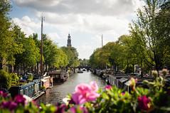 Prinsengracht - Amsterdam - Netherlands (Mr. Amsterdam) Tags: amsterdam amsterdamcanal canal prinsengracht jordaan europe netherlands houseboat westerkerk grachten gracht hausboote hausboot