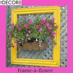 Frame a Flower (We Decor8) Tags: gurgaon balconydecor wedecor8