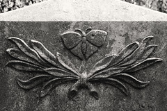 Butterfly (michael_hamburg69) Tags: hamburg germany deutschland cemetery ohlsdorf ohlsdorferfriedhof friedhof gottesacker ohlsdorfer freilichtmuseum museum heckengarten standortbh5455 schmetterling butterfly †