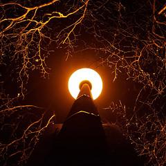 Strange byways (Arni J.M.) Tags: lamppost light darkness up branches circle sign strangebyways windsor england uk