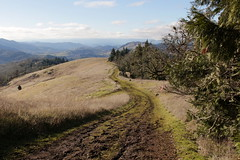 Trail shot (rozoneill) Tags: north bank habitat columbia whitetailed deer roseburg wilbur glide sutherlin oregon hiking wildlife refuge preserve umpqua river whistlers bend