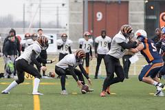 4D3A3033 (marcwalter1501) Tags: minotaure tigres strasbourg footballaméricain football sportdéquipe sport exterieur match nancy