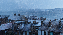 'Winter calls' (Anthony Goodall) Tags: winter snow landscape lighthouse weather roofs sea cold