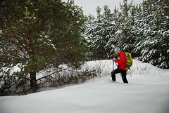 Граф Остоженский любит зимнюю охоту!