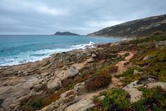 Cap Tahia