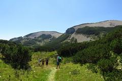 Čvrsnica Mountain, Bosnia and Herzegovina (HimzoIsić) Tags: landscape outdoor mountain mountainside mountaineering hiking hill peak conifer road