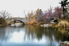 Grand Central Park (sidrog28) Tags: grand central park usa bridge lake us new york newyork long exposure water apple photography nikon big cold winter autumn