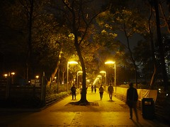 Night scene of park under lamplights (cyangLtravel) Tags: nightscene people park lamplights streetphotography walking