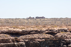 447A8624 (nathankdavis) Tags: nullarbor southaustralia westernaustralia roadtrip road house australia bight ocean nature seascape explore plains desert landscape perth melbourne highway kangaroo vic wa travel open