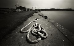 in a port (mio_slowphoto) Tags: bw blackandwhite pinhole zero69