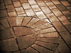 La vie en brique (Dave Ward Photography) Tags: 2005 blackandwhite bw usa brick texture sepia us washington unitedstates bricks unfound sidewalk bellingham wa praiseandcurseofthecity whatcom davewardsmaragd