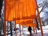 IMG_0370.JPG (dalylab) Tags: orange newyork art gates centralpark publicart saffron christo thegates wildcard gatesmemory