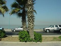 Red Sea (Jackson Lee) Tags: travel saudi arabia jeddah red sea