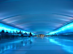 Detroit Airport (Kaddy) Tags: blue light motion topf25 topv111 topv2222 catchycolors airport movement topf50 topv333 topf75 saveme4 saveme6 angle saveme2 saveme3 saveme7 topv1111 escalator detroit interestingness1 perspective tunnel topf300 saveme10 topv5555 saveme8 saveme9 parallax topv9999 topf150 topv3333 topv4444 topf100 topf250 topf200 dtw saveme11 topv8888 topv6666 topv7777 saveme12 saveme1 topf400 kaddy rated6 topf500 saveme13 topf350 tunneloflight matchpoint topv19999 matchpointwinner theflickrcollection lpairports safedomino