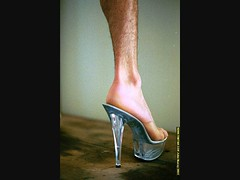 09020100013 (hopeless128) Tags: hair picasa2 leg sydney cinderella stiletto highheeledshoes datamining explored wwwtimtamcom