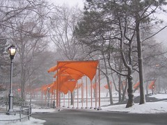 Winter dreamscape (hbomb1947 the turnstile-jumper) Tags: 2005 nyc newyorkcity winter orange snow newyork topf25 topv111 mrjackfrost 1025fav interestingness topf50 topv555 topv333 topf75 500plus wind gates centralpark manhattan topv1111 topv999 windy 2550fav kra05 topv777 i10 creamofthecrop saffron christo thegates february2005 gatesproject gatesmemory interestingness3 50fav sbp2005 cotcbest2005
