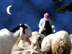 Shepherd's Moon (DWinton) Tags: sheep goat shepherd moon night desert painted photoshop blue white kaffiyeh bo