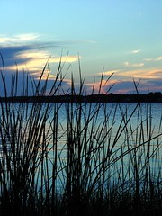 sunset over water (zen) Tags: sunset sky water lakes grasses gulfshores 20030926 zensutherland