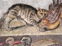 Colorful Cat Mosaic from a dining room (tricli...