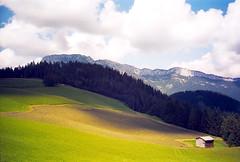 Field (Walter Quirtmair) Tags: salzburg film field austria farmer swq takenbywalter eos300
