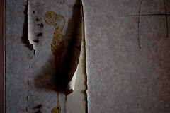 ripped wall paper (patrickemmons) Tags: fly paper ripped wall paint peeling glue hospital abandoned spooky