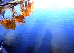 Meer Reflections - by djwhelan