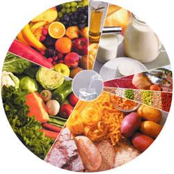 """Résultat de recherche d'images pour """"nutriment"""""""