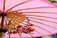 umbrella (sam b-r) Tags: pink color topf25 umbrella sambrimages