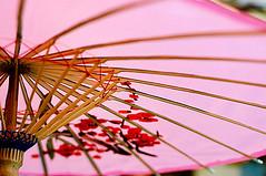 umbrella (sam b-r) Tags: pink color topf25 umbrella sambrimages