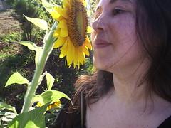 Sunflower and I (marlenells) Tags: light sunlight selfportrait flower nature sunshine topc25 topv111 510fav ilovenature topv555 topv333 before photowalk verdeeamarelo interestingness50 i500