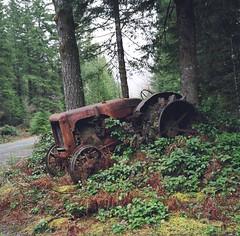 My favorite tractor (artandscience) Tags: rolleiflex tlr tractor kodak100uc
