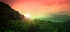 implying the universe (manyfires) Tags: light color photoshop rainforest puertorico lensflare elyunque dreamcatcher